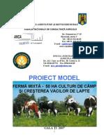 Ferma Mixtă - 50 Ha Culturi de Câmp Şi Creşterea Vacilor