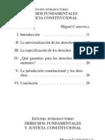 Rolla Giancarlo, Derechos Fundamentales, Estado Democrático y Justicia Constitucional 2