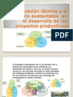 La Innovación Técnica y El Desarrollo Sustentable En
