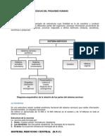 Manual de Primer Año Psico- 2012