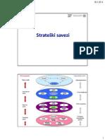 Strateški Savezi DS 2014