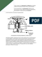 Instrumentos de medicion electrica.doc