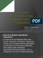Aparato Reproductor Femenino y Masculino[1]