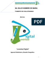 Brief de Juventud Digital