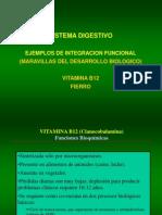 B12 Fierro
