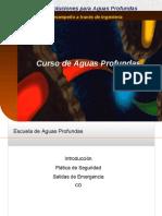1 Introduction 2005 (Spanish Final)