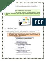 Estrategias de Organización de La Informacion