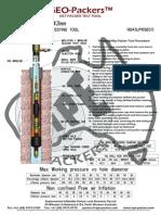 43 Dst Packer Test Tool