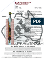 73 Dst Packer Test Tool
