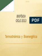 termodinamica-y-bioenergetica-08-y-15-04-2013