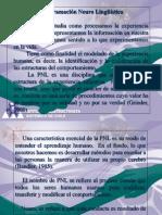 PNL Submodalidades