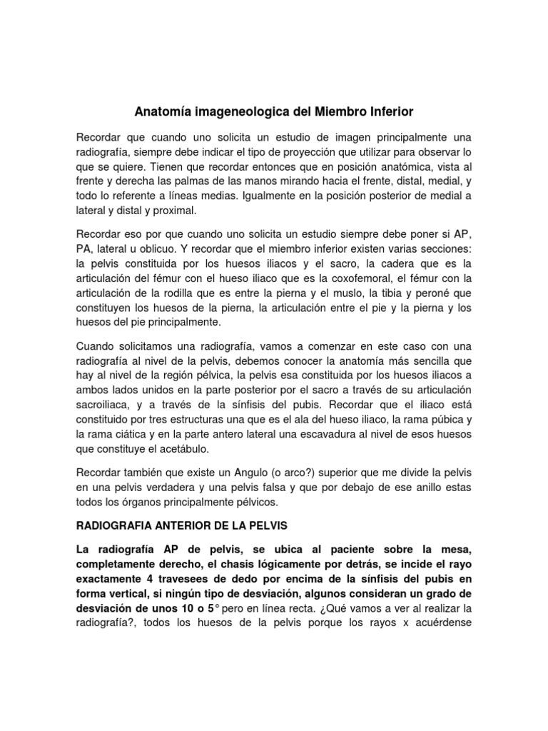 Anatomia Imagenologica Del Miembro Inferior