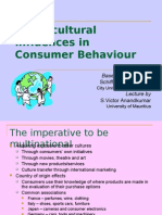 Cross-Cultural Influences in Consumer Behaviour