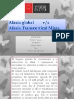 Afasia Taller
