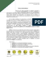 Guía Embrio.pdf