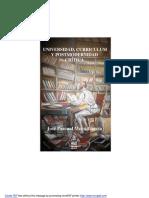 Universidad Curriculo y Postmodernidad Crítica
