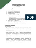 Programa NSE 2013