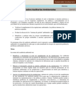 finalidad de la auditoria ambiental.pdf