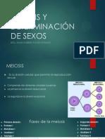 Meiosis y Selección de Sexos