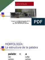 morfologia (1)