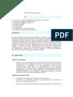 Extensiones Microeconómicas