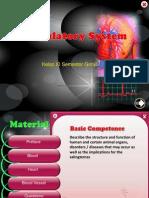 Sistem Perdaran Darah