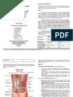 Tentir Anatomi Modul G & C