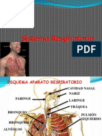 aparato-respiratorio DUOC