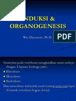 Bioper Induksi Organo