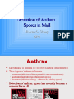 Detection of Anthrax Spores in Mail