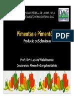 Pimentas e Pimentão1