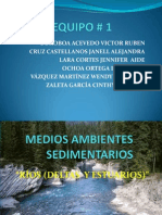 Medios Ambientes Sedimentarios