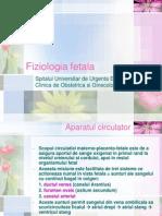 Fiziologia fetala