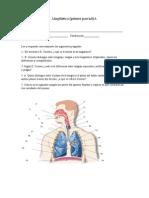 Examen Lingüística 1o 3 Mayo.pdf