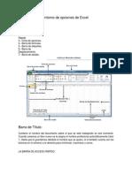 Descripción Del Entorno de Opciones de Excel