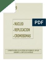 08_15Nuc_Repl.pdf
