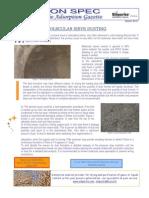 ceca-newsletter-march-2011.pdf