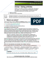 WC Grammar Using Articles