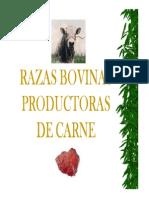 RAZAS_CARNE.pdf