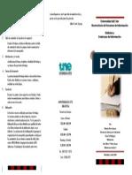 Triptico monografia.pdf