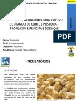 Incubatórias
