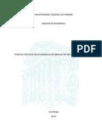 Anderson Bonamigo - Dissertacao de Mestrado 2010