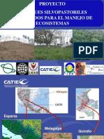 Claudia Lecciones GEF_desarrollo Verde e Inclusivo (19 Mayo 2014) CATIE