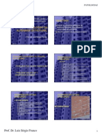 AULA 13 - PCC 2515 - Patologia