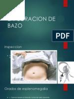 EXPLORACION DE BAZO.pptx