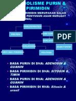 Metabolisme Purin & Pirimidin_2