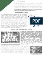 Seleção Brasileira.pdf