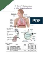 Bio 12 CH 15 Respirtory System