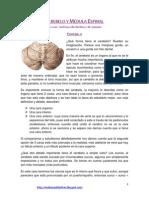 8. Cerebelo y Medula (b) (1)