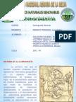 Carto Diapositivas